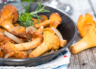 Rezepte-Vegetarisch-Pfifferlingpfanne